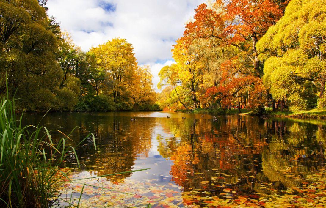 paisaje lago arboles naturaleza wallpaper