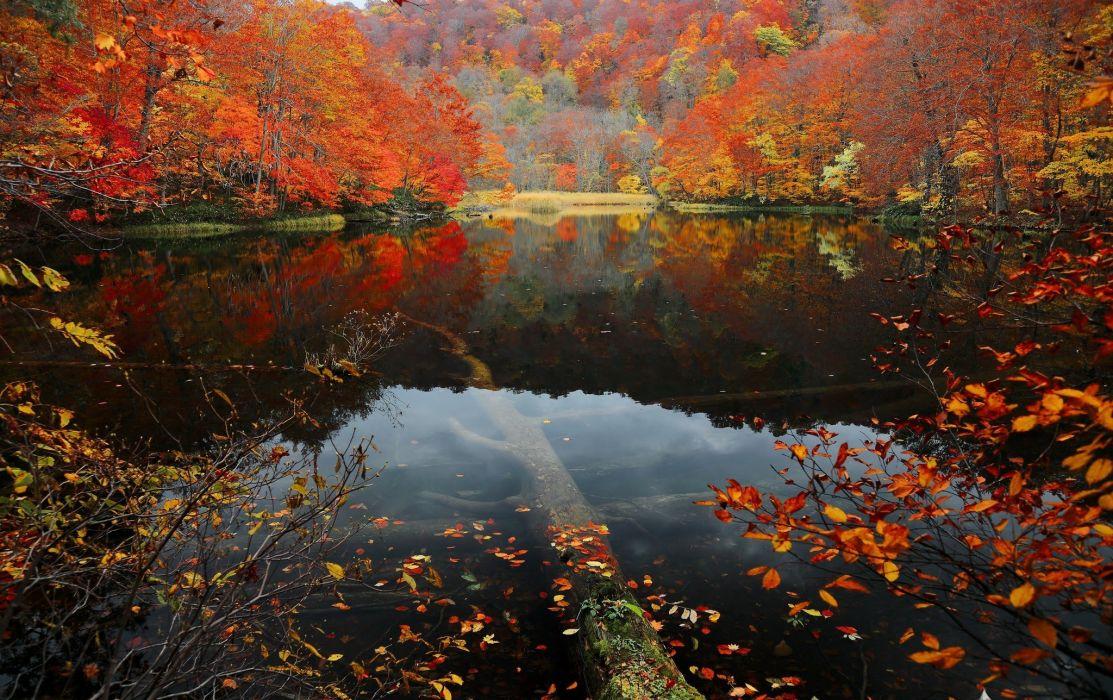 lake nature reflection water wallpaper
