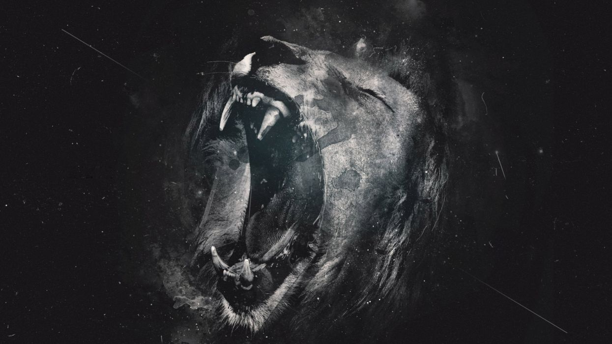 35809924-lion-hd-wallpaper wallpaper