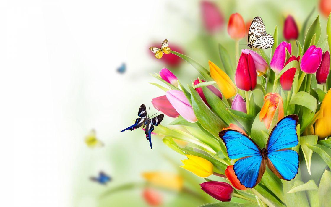35876192-flowers wallpaper