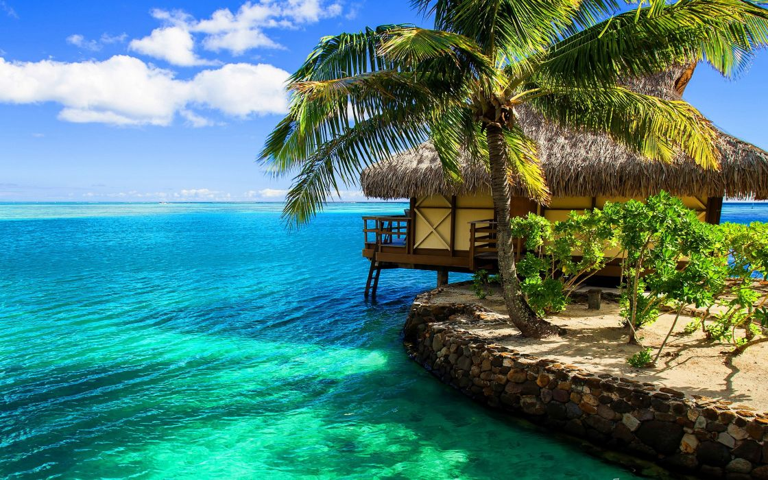 35858875-tropical-pictures wallpaper