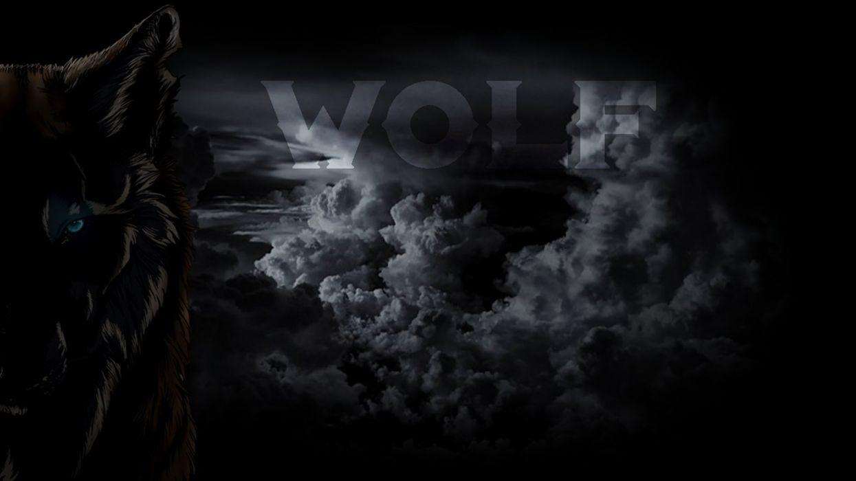 wolf tempest cloud serious danger day  wallpaper