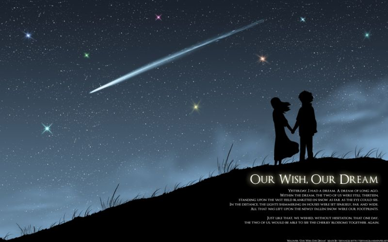 5 Centimeres Per Second (15) wallpaper