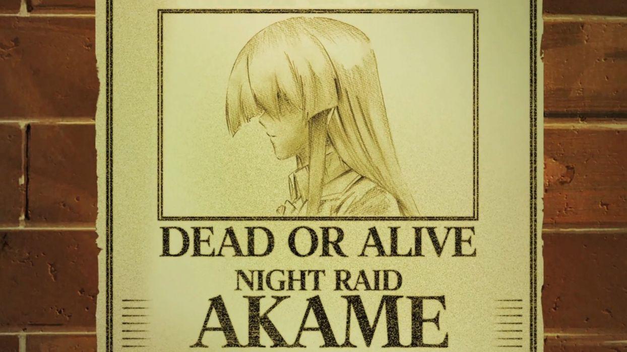 Akame Ga Kill (10) wallpaper