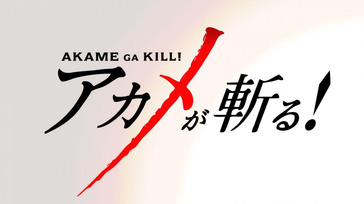 Akame Ga Kill (30) wallpaper