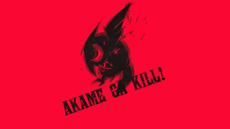 Akame Ga Kill (50) wallpaper