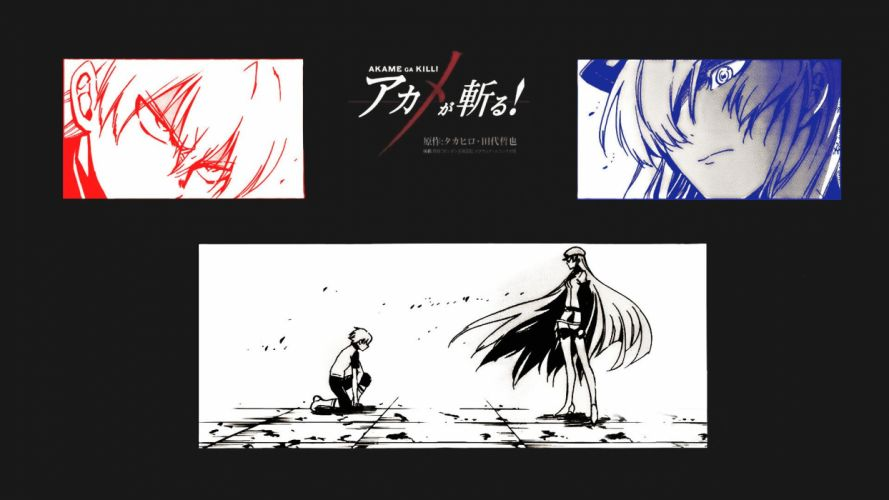 Akame Ga Kill (54) wallpaper