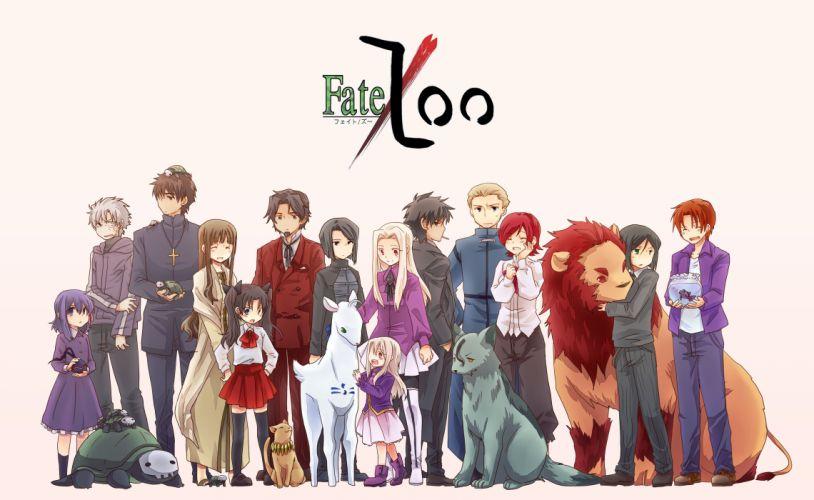 Fate Series (210) wallpaper