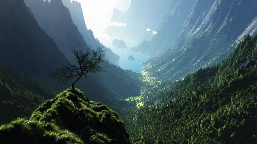 bosque valle montay wallpaper