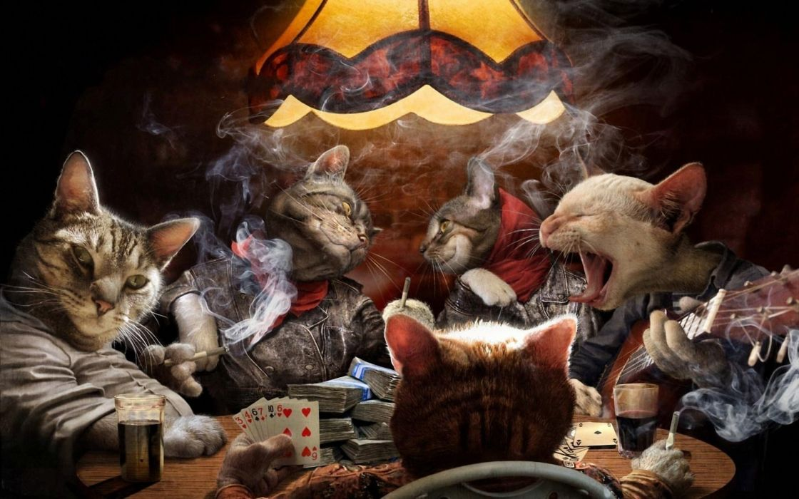 cards cats cigarette funny game humor poker smoke wallpaper