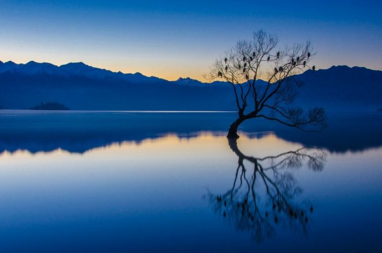 nature landscape calm bluewater trees lake reflection wallpaper