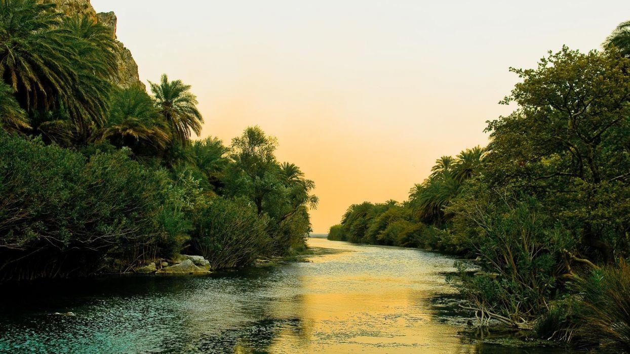 rio selva naturaleza arboles wallpaper