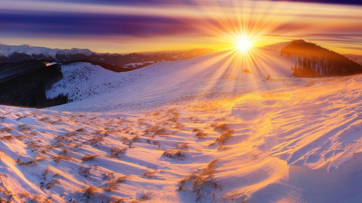 Winter Sun wallpaper