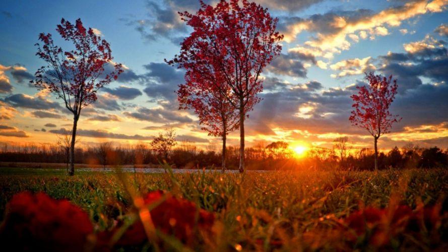 Autumn Sunset wallpaper