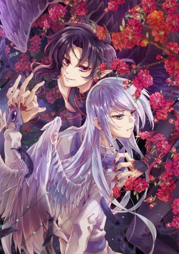 card captor sakura anime boys wings angel series flowers wallpaper