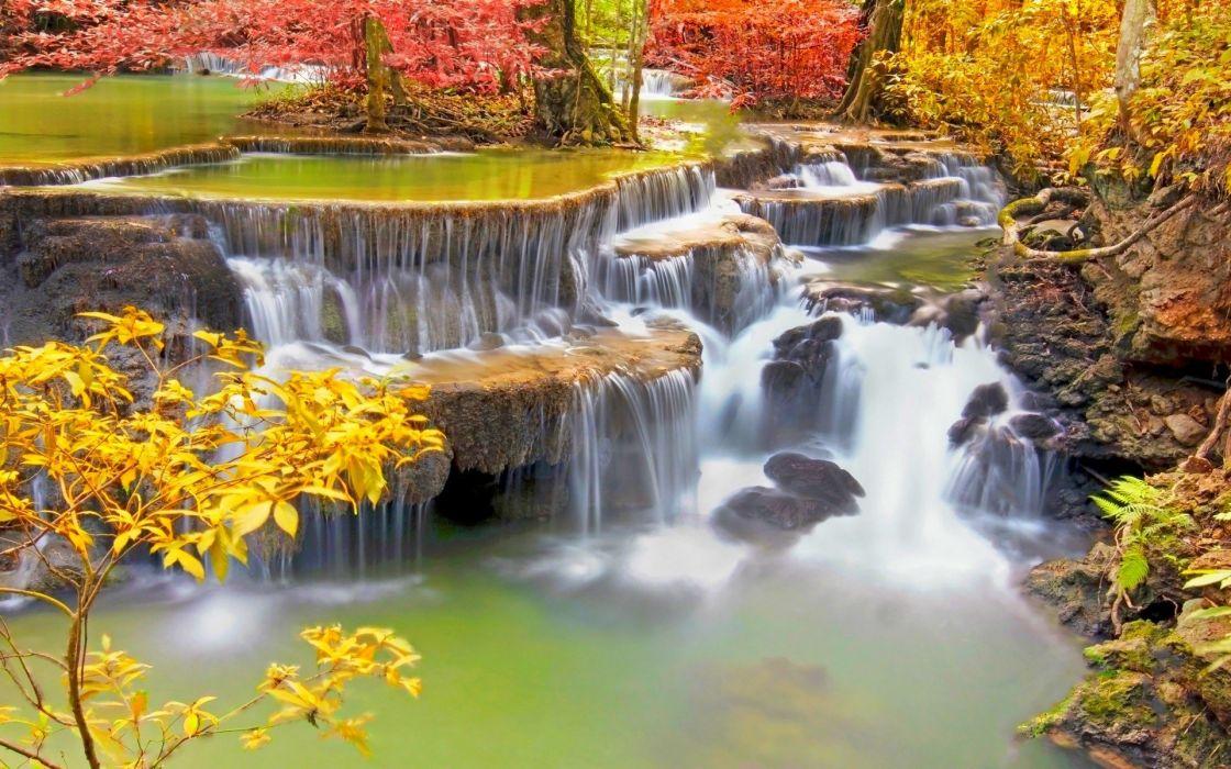 naturaleza flores cascada rio wallpaper
