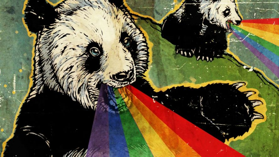 Funny Wallpaper 09824573 wallpaper