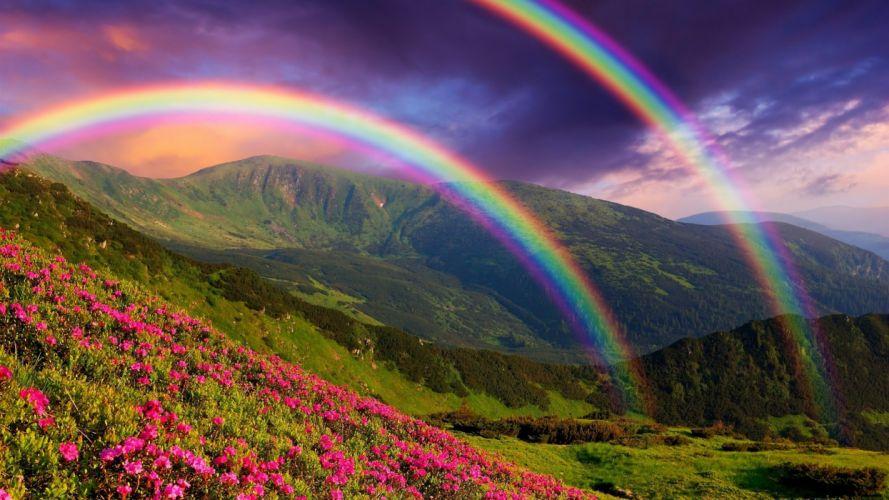 dobre arco iris montay wallpaper