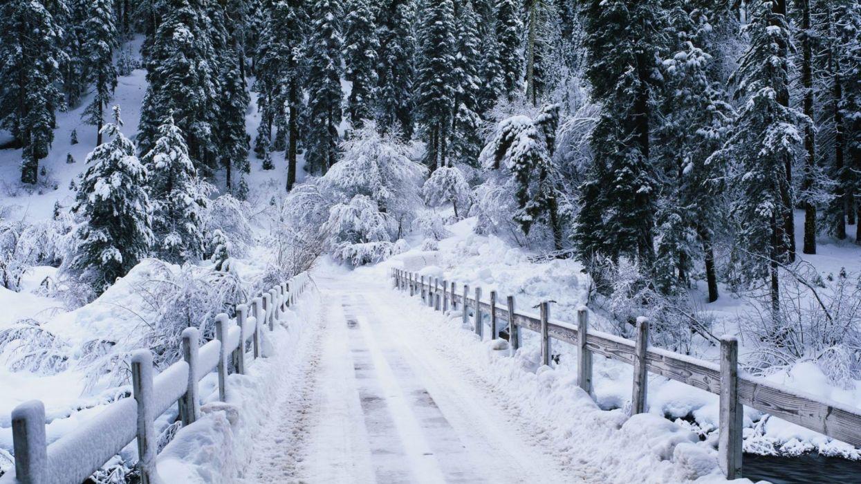 nevada puente bosque carretera naturaleza wallpaper