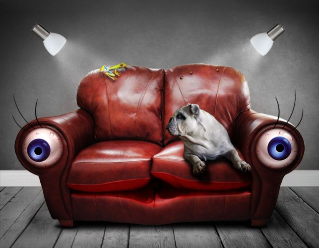 Sofa Couch Surreal Eyes Dog Art Artificial Dream wallpaper