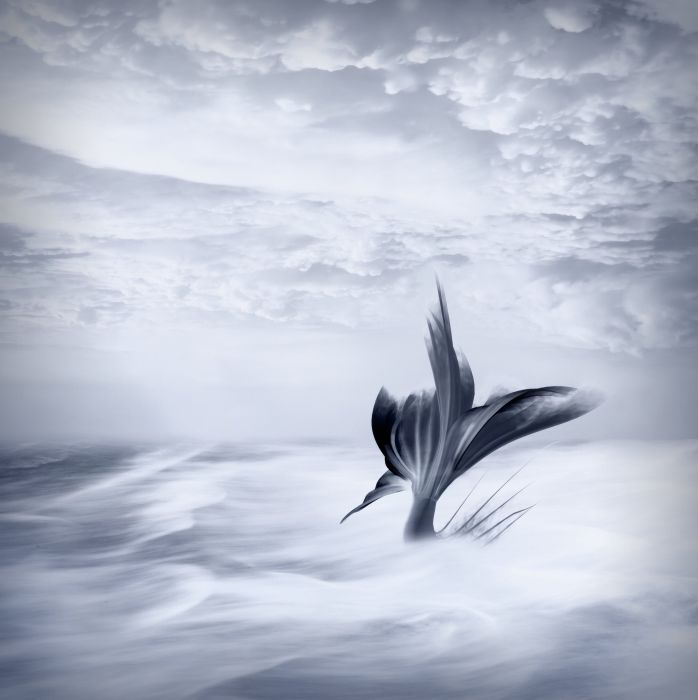 Background Fantasy Fairy Tale Mermaid Blue Clouds wallpaper
