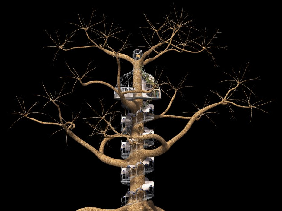 Tree Fantasy Spiral Staircase Fairy Tales wallpaper
