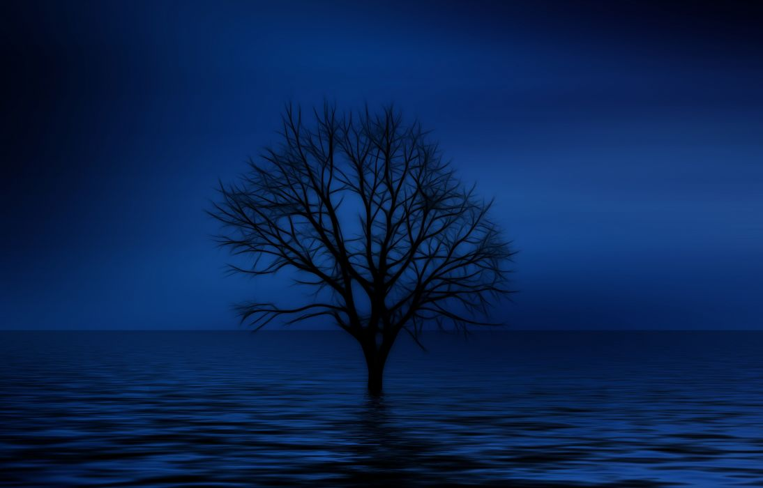 Tree Kahl Psychology Loneliness Isolation Sadness wallpaper