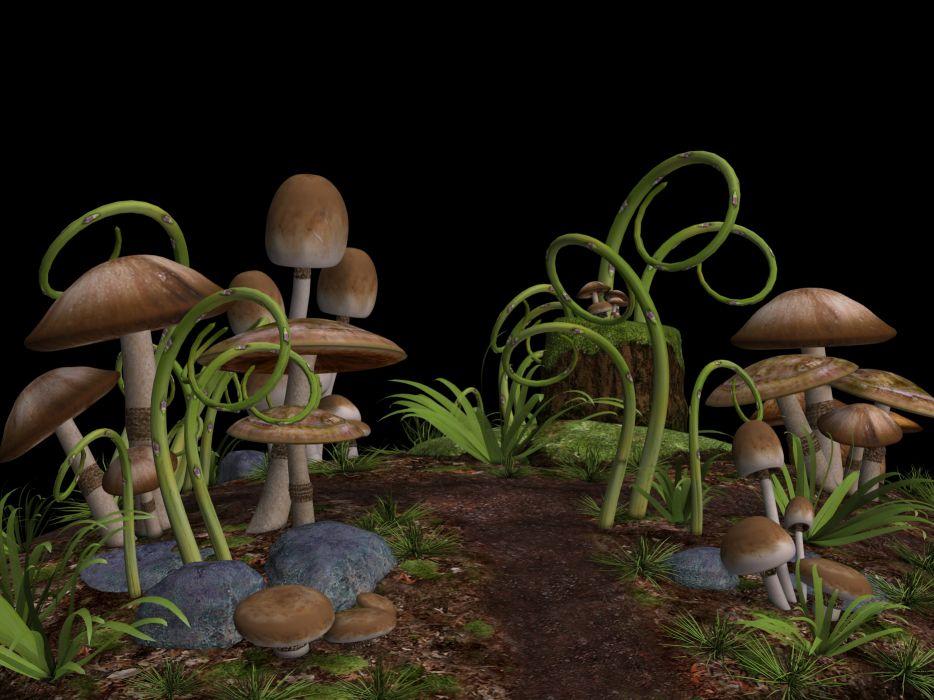 Mushrooms Mushroom Landscape Stones Grass Ground wallpaper