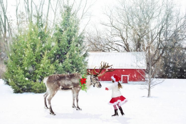 Christmas Scene Reindeer Little Girl Santa Girl wallpaper