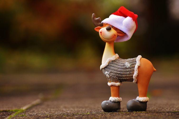 Moose Christmas Christmas Motif Reindeer Winter wallpaper