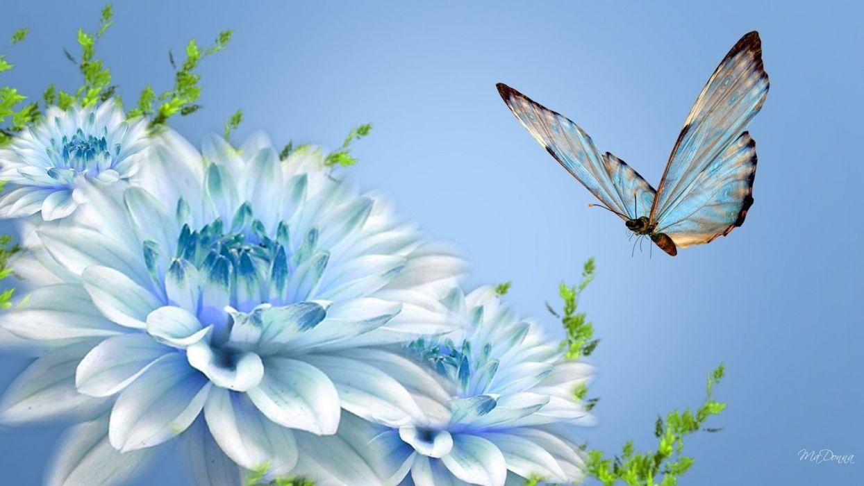 Flowers and butterflies wallpaper