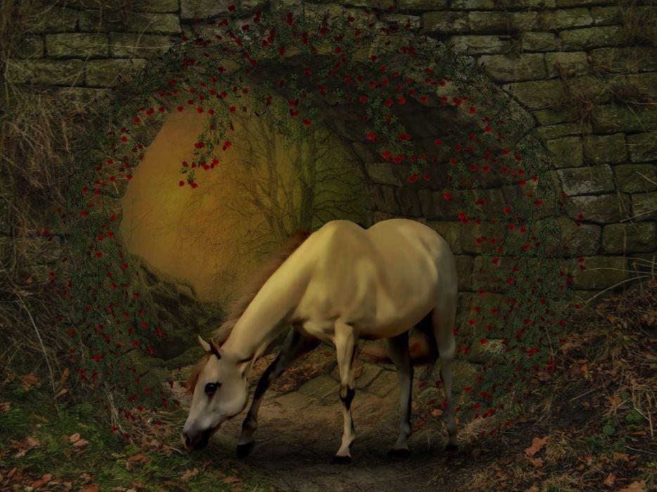 Horse Photoshop Manipulation Fantasy Freedom Hope wallpaper