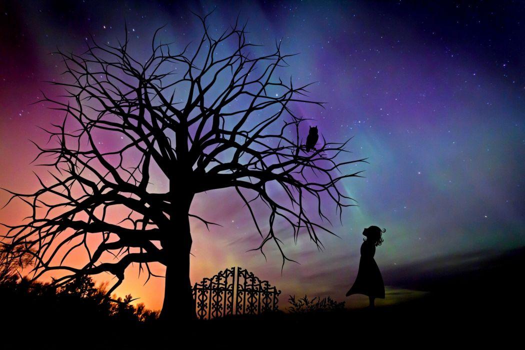 Girl Starry Sky Evening Sky Fairy Tales Fantasy wallpaper