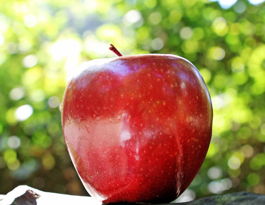 Apple Red Apple Red Chief Red Fruit Frisch wallpaper