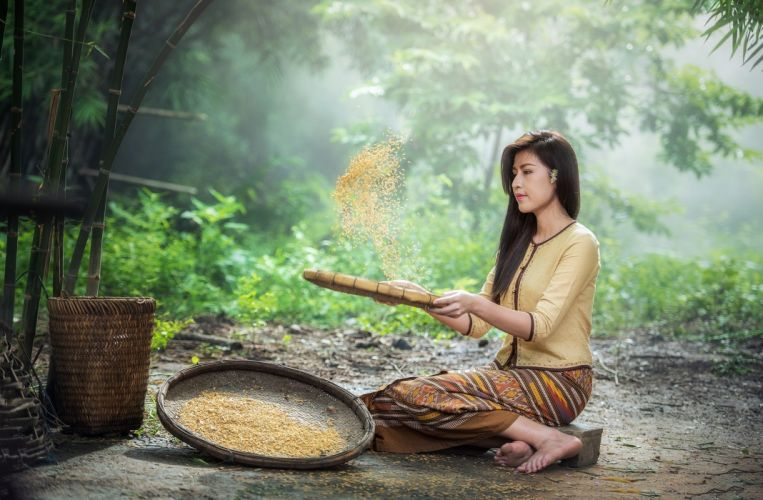 Rice Sow Adult Ancient Asia The Job Pretty asian wallpaper
