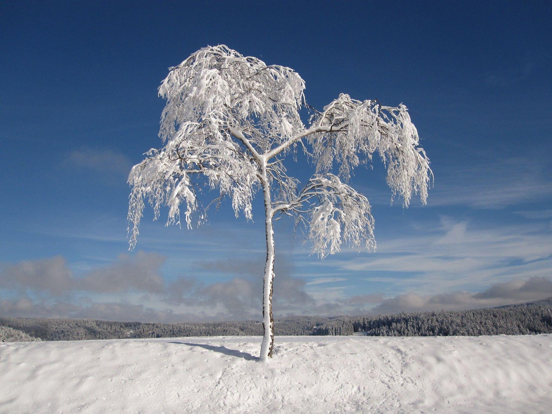 snow whiteside, mo - HD1867×1400