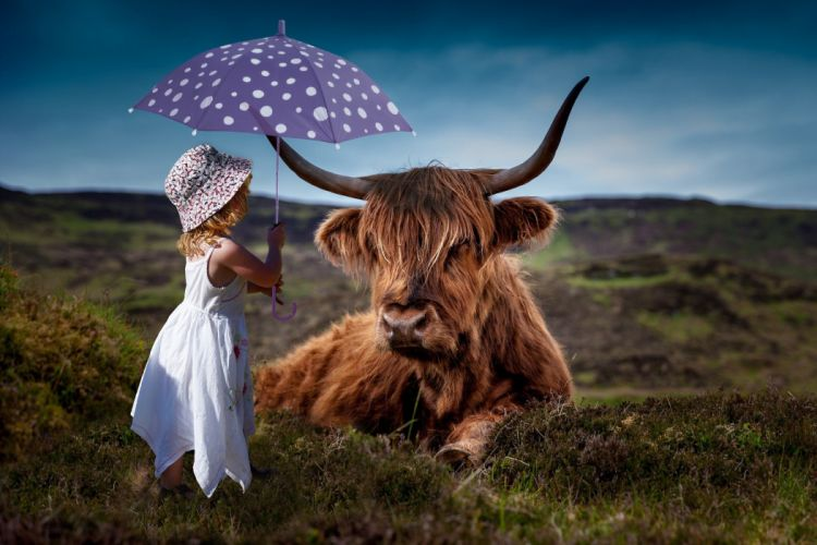 Child Cow Umbrella Decoration Room girl wallpaper