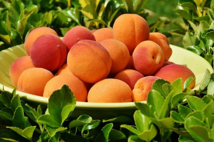 Apricot Fruit Fruits Sweet wallpaper