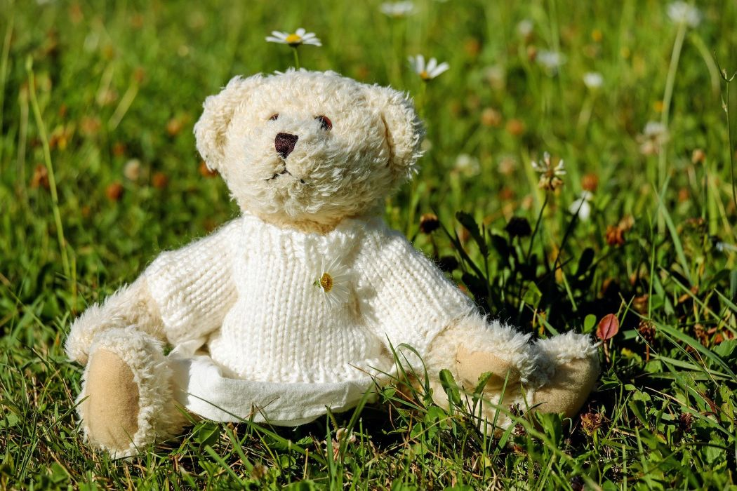 Teddy Plush Bears Cute Teddy Bear Meadow toy wallpaper