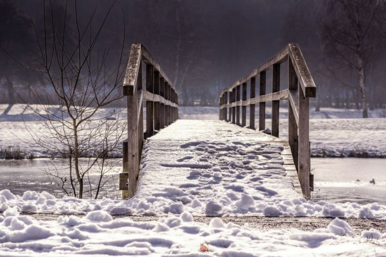 Bridge Web Railing Winter Nature Wood wallpaper