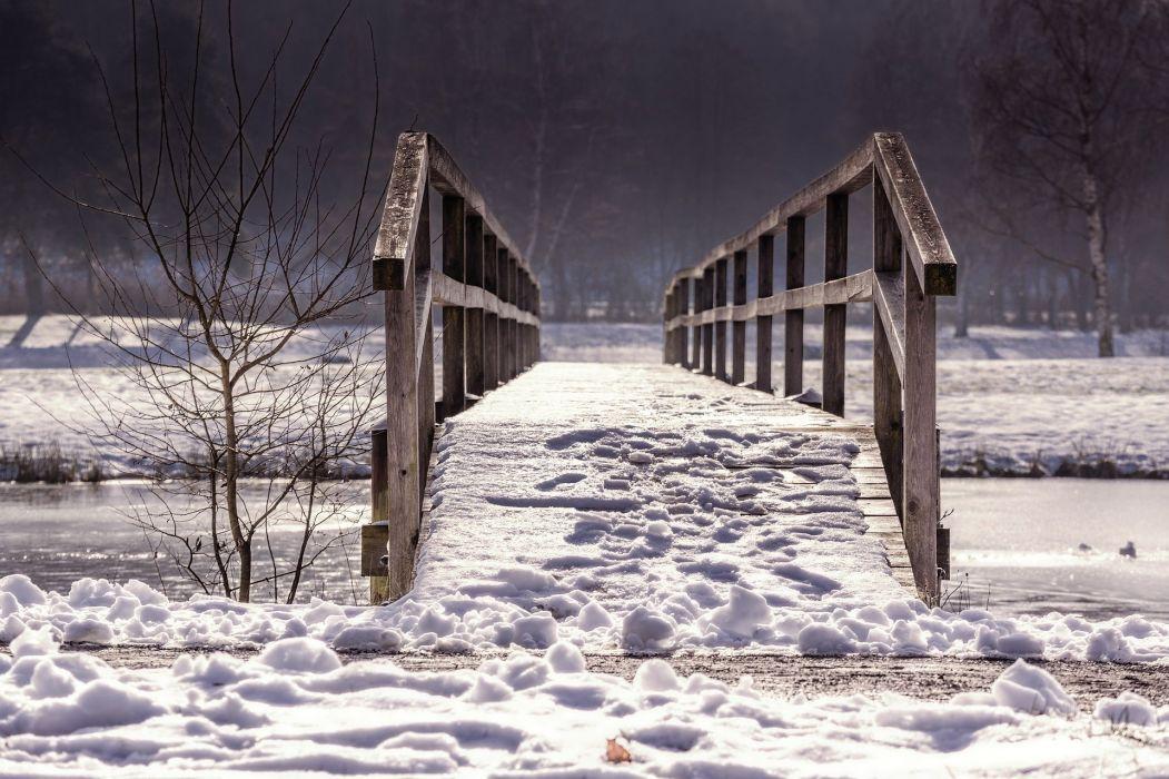Bridge Web Railing Winter Nature Wood wallpaper