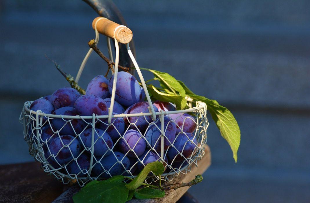 Plums Fruit Fruit Basket Blue Fruits Violet Plum wallpaper