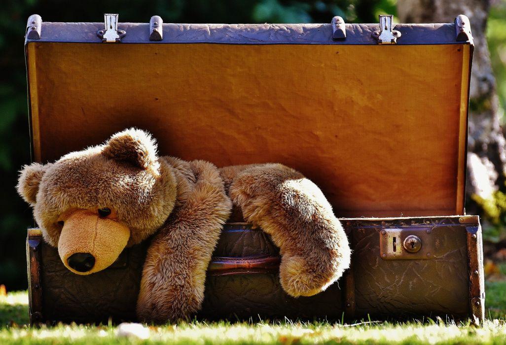 Luggage Antique Teddy Soft Toy Stuffed Animal Toys g wallpaper
