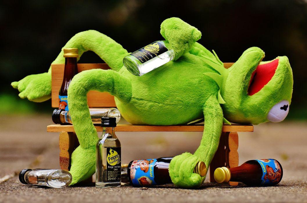 Kermit Frog Drink Alcohol Drunk Wallpaper 1920x1271