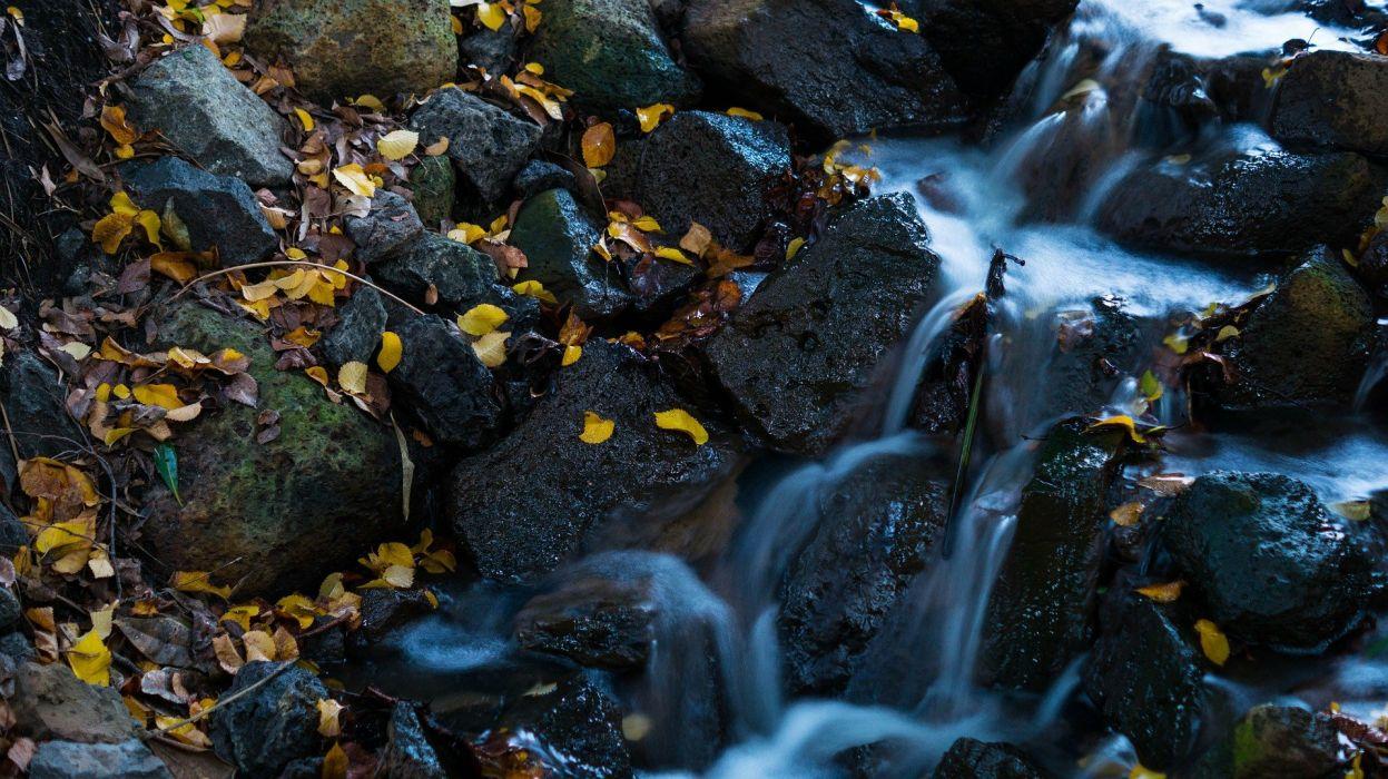 Waterfall Leaves Water Nature wallpaper