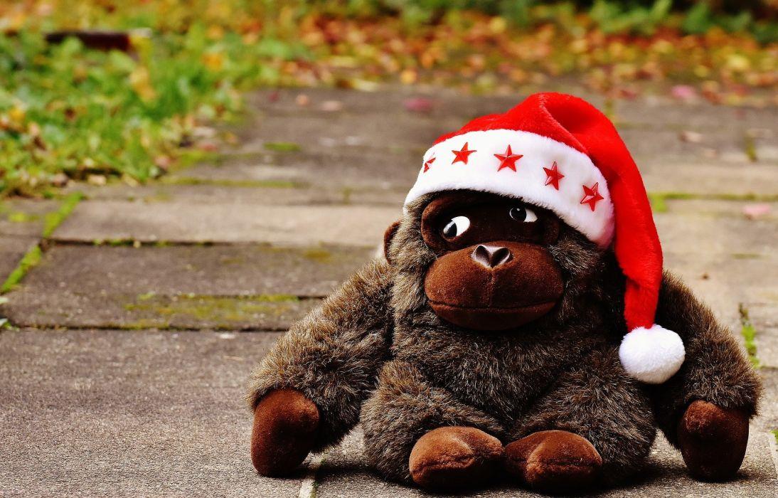 Monkey Gorilla Christmas Santa Hat Stuffed Animal wallpaper