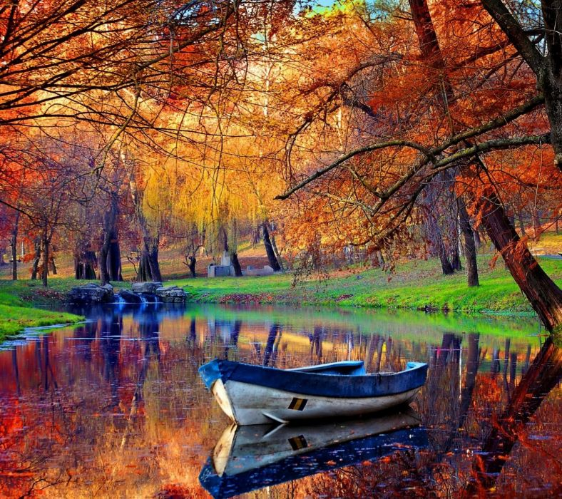 landscape autumn tree lake wallpaper