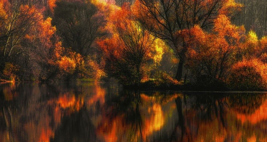 Amber Colorful Fall forest lake landscape leaves nature reflection Trees water yellow wallpaper
