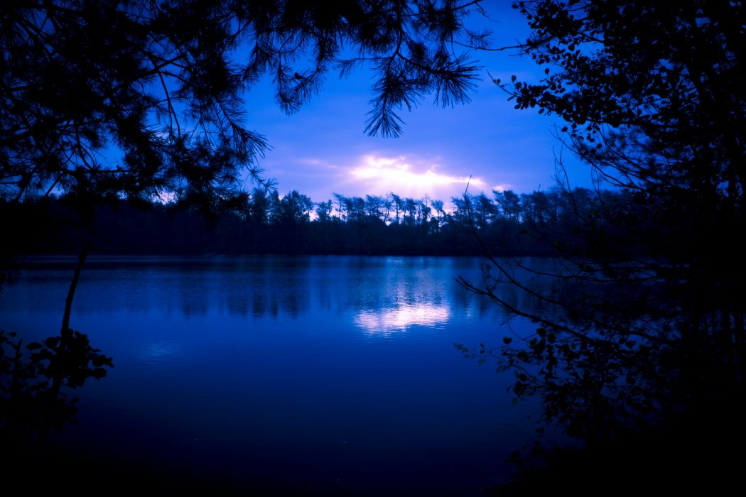 lake nature blue tree forest wallpaper