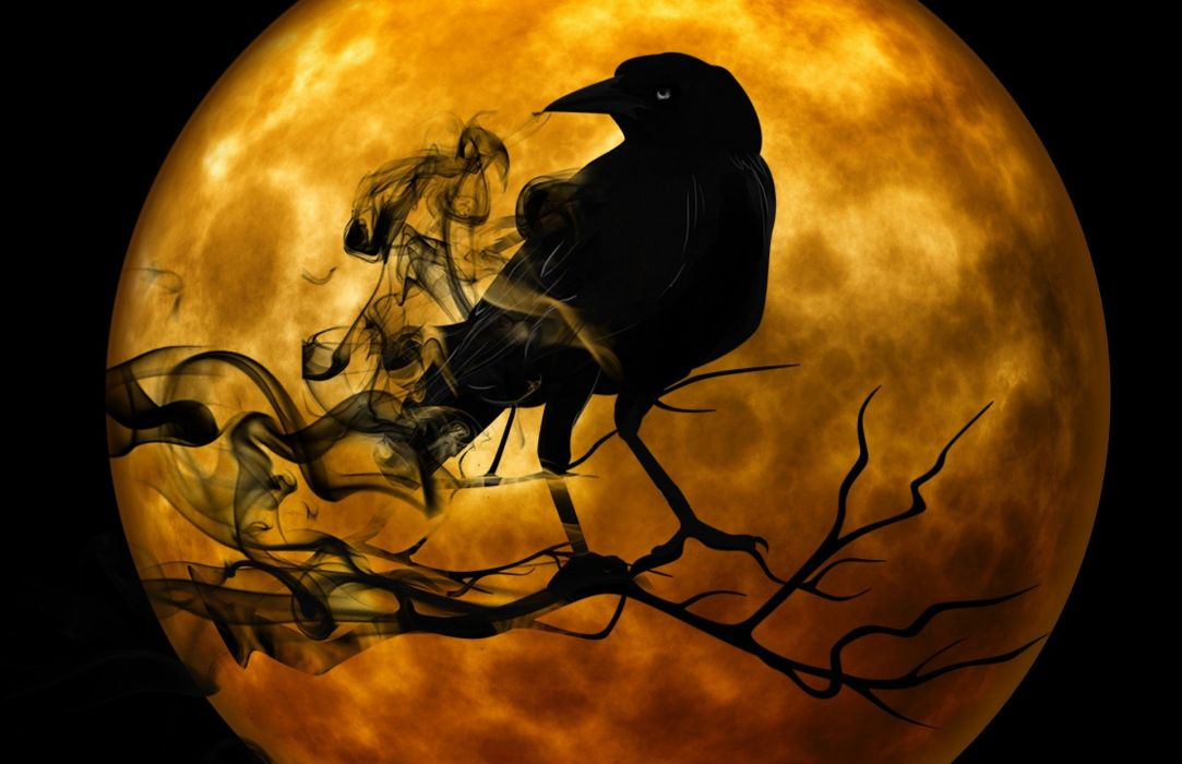 Raven Crow Night Creepy gothic halloween moon wallpaper